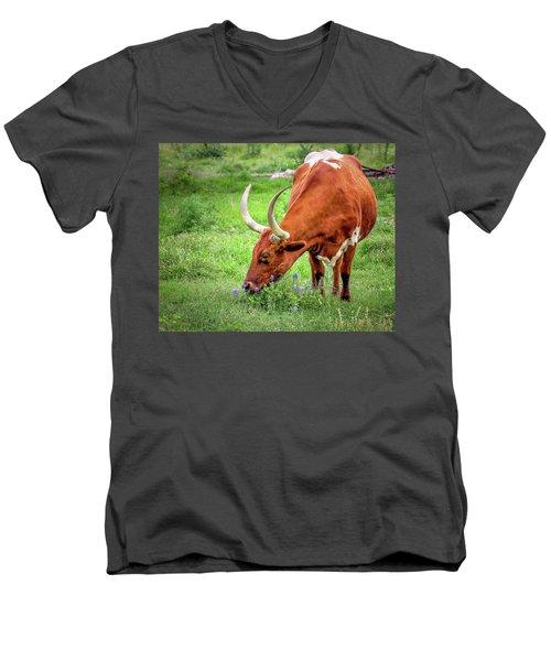 Texas Longhorn Grazing Men's V-Neck T-Shirt