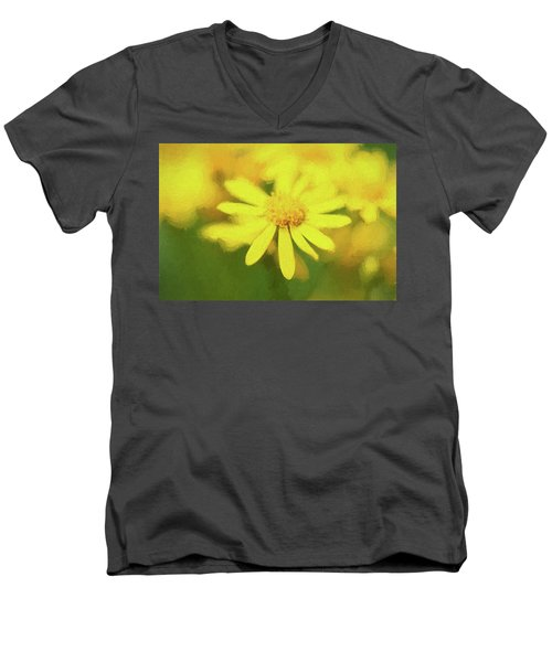 Texas Wildflower 2 Men's V-Neck T-Shirt