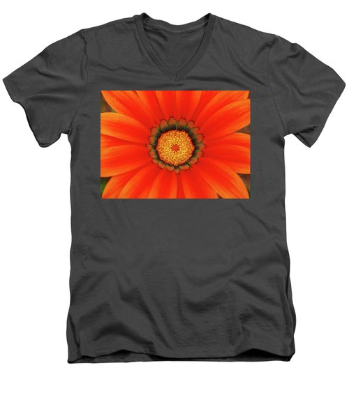 The Beauty Of Orange Men's V-Neck T-Shirt