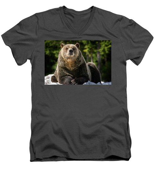 The Grizzly Bear Grinder Men's V-Neck T-Shirt