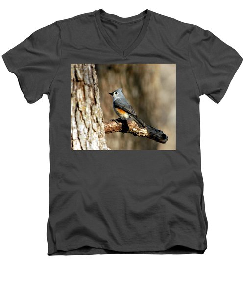 Tufted Titmouse On Branch Men's V-Neck T-Shirt