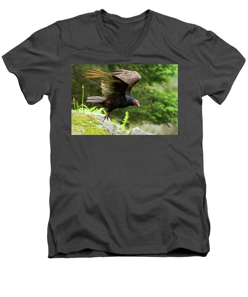 Men's V-Neck T-Shirt featuring the photograph Turkey Vulture by Mircea Costina Photography