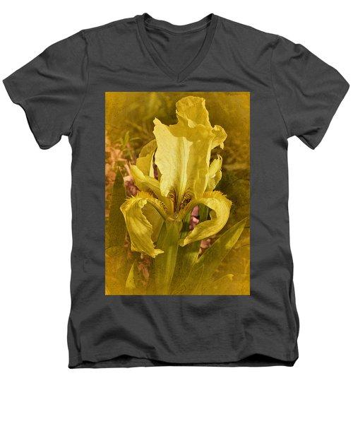 Vintage Dwarf Iris No. 2 Men's V-Neck T-Shirt by Richard Cummings
