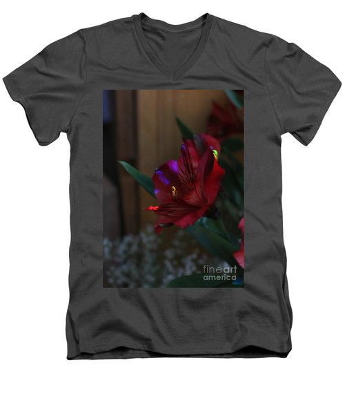Men's V-Neck T-Shirt featuring the photograph Waiting For You by Marie Neder