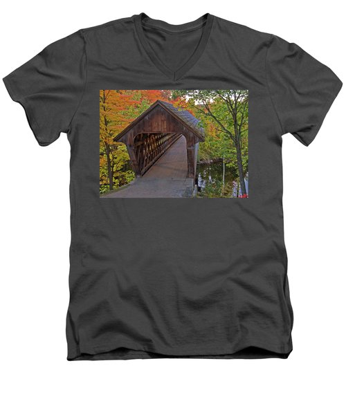 Welcoming Autumn Men's V-Neck T-Shirt