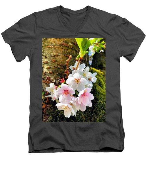 White Apple Blossom In Spring Men's V-Neck T-Shirt