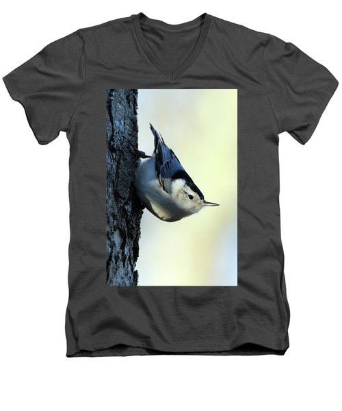 White Breasted Nuthatch Wading River New York Men's V-Neck T-Shirt by Bob Savage