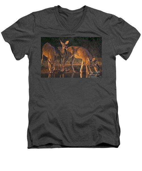 Whitetail Deer At Waterhole Texas Men's V-Neck T-Shirt