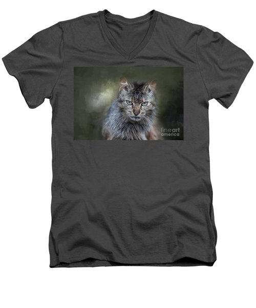 Wild Cat Portrait Men's V-Neck T-Shirt