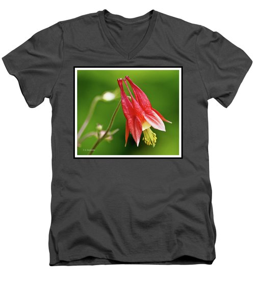 Wild Columbine Flower Men's V-Neck T-Shirt by A Gurmankin