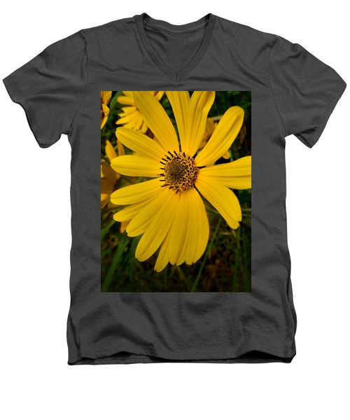 Wild Yellow Men's V-Neck T-Shirt