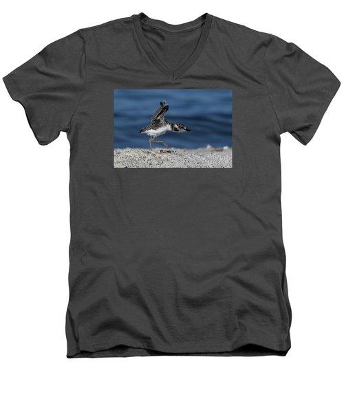 Wilson's Plover Men's V-Neck T-Shirt