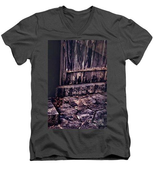 Wood And Stone Men's V-Neck T-Shirt