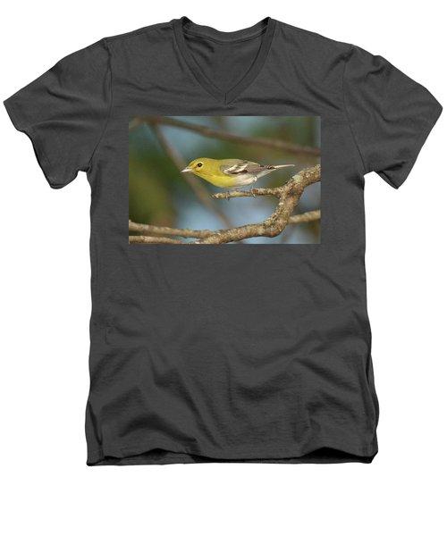 Yellow-throated Vireo Men's V-Neck T-Shirt