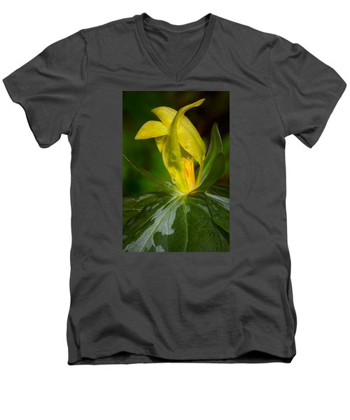 Yellow Trillium Men's V-Neck T-Shirt
