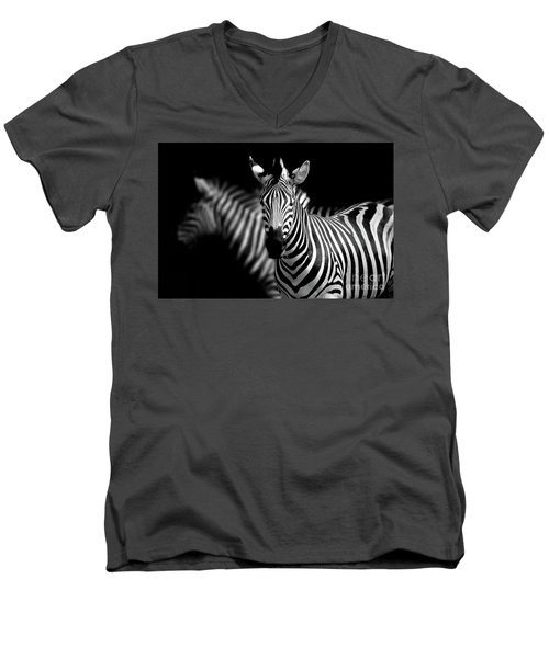 Men's V-Neck T-Shirt featuring the photograph Zebra by Charuhas Images