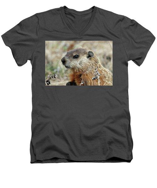 Woodchuck Calverton New York Men's V-Neck T-Shirt