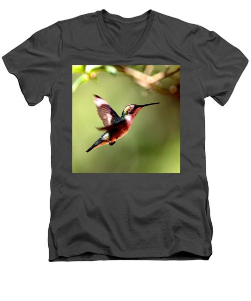 103456 - Ruby-throated Hummingbird Men's V-Neck T-Shirt by Travis Truelove