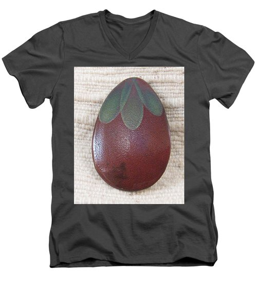 1390 Eggplant Men's V-Neck T-Shirt by Dianne Brooks