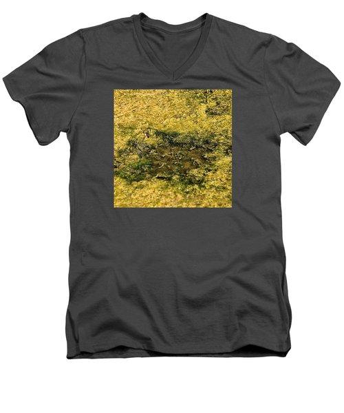 Primordial Soup Men's V-Neck T-Shirt by Bob Wall