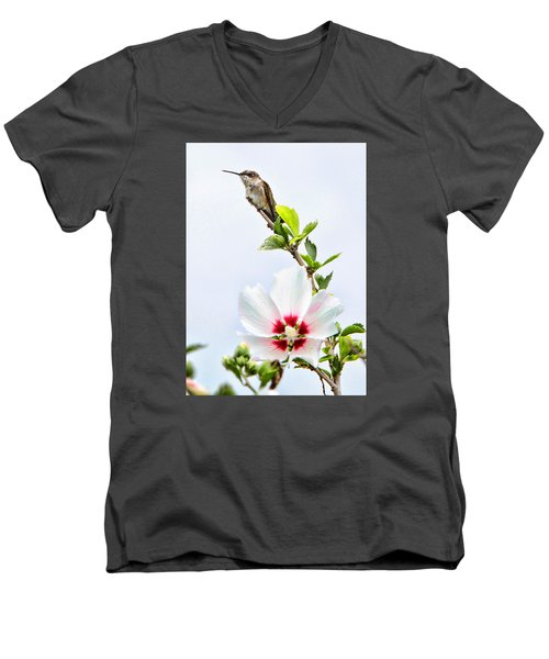 Hummingbird Men's V-Neck T-Shirt by John Freidenberg
