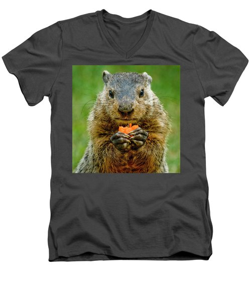 A Hungry Fellow  Men's V-Neck T-Shirt by Paul W Faust - Impressions of Light