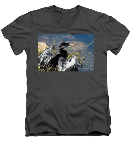 Anhiinga Men's V-Neck T-Shirt