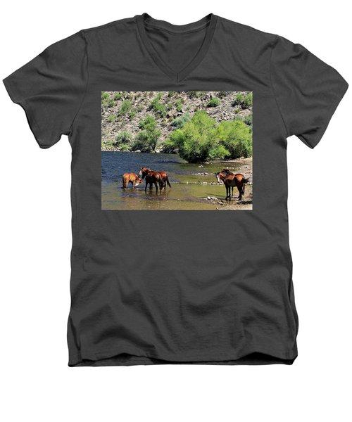 Arizona Wild Horses Men's V-Neck T-Shirt