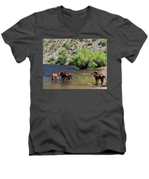 Arizona Wild Horses Men's V-Neck T-Shirt