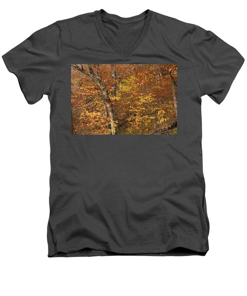 Autumn In The Woods Men's V-Neck T-Shirt