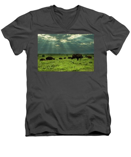 Bison Men's V-Neck T-Shirt