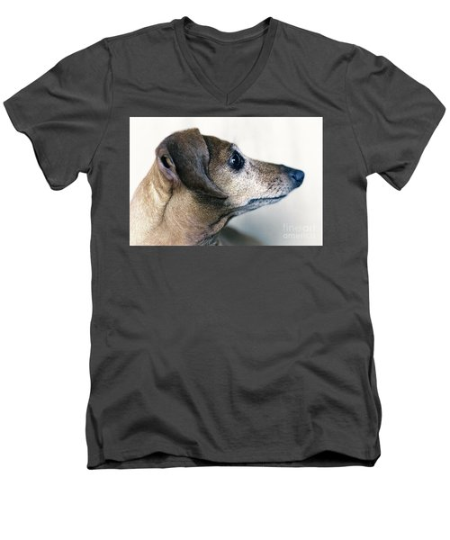 Brownie The Dachshund Men's V-Neck T-Shirt