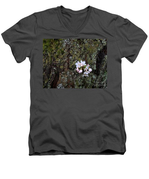 Men's V-Neck T-Shirt featuring the photograph Cherry Blossoms by Tari Simmons