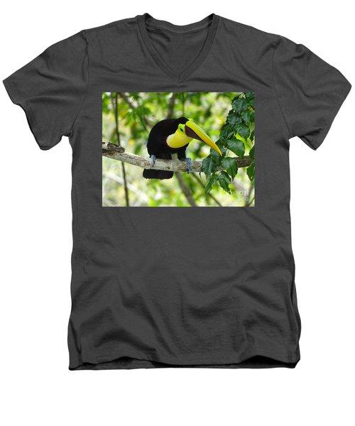 Chestnut-mandibled Toucan Men's V-Neck T-Shirt