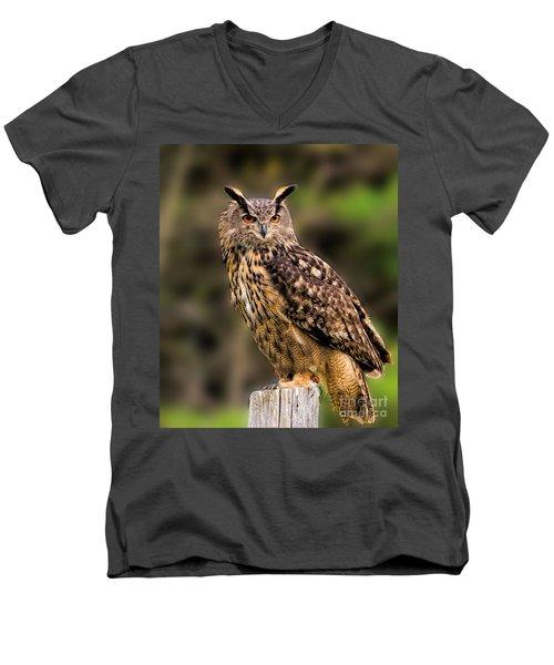 Eurasian Eagle Owl Perched On A Post Men's V-Neck T-Shirt