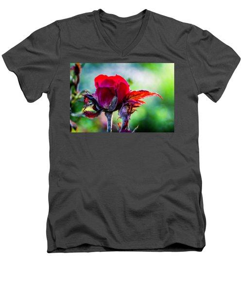Fading Beauty Men's V-Neck T-Shirt