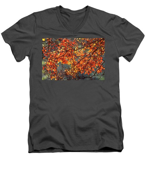 Men's V-Neck T-Shirt featuring the photograph Fall Leaves by Nicholas Burningham
