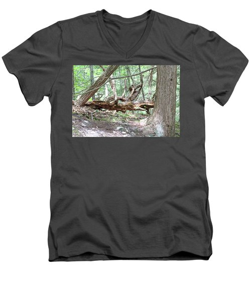 Fallen Tree Men's V-Neck T-Shirt