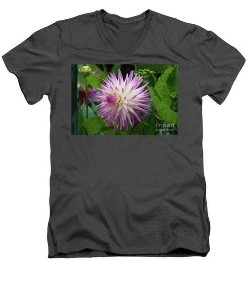 Glenbank Twinkle Dahlia Men's V-Neck T-Shirt