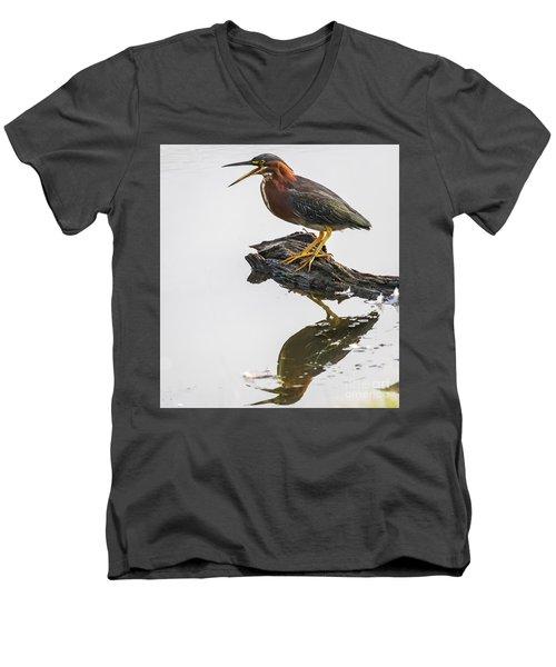 Green Heron Men's V-Neck T-Shirt