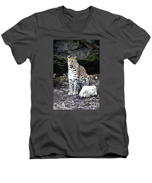 Leopard Men's V-Neck T-Shirt by Janice Spivey