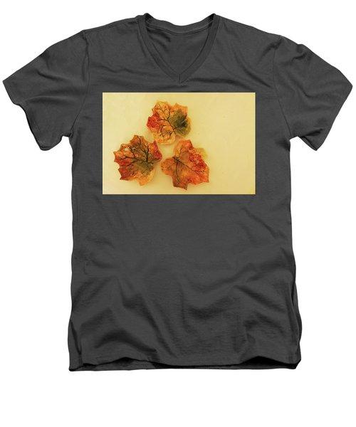 Men's V-Neck T-Shirt featuring the photograph Little Leif Dish by Itzhak Richter