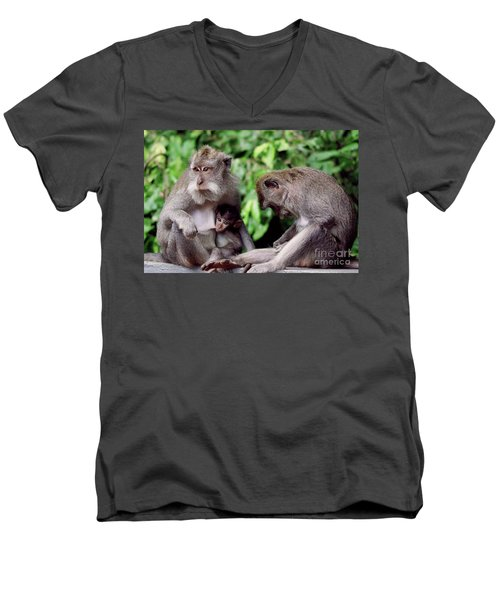 Long Tailed Macaques  Men's V-Neck T-Shirt by Cassandra Buckley