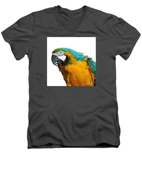 Macaw Bird Men's V-Neck T-Shirt by Gunnar Orn Arnason