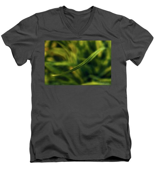 Natures Way Men's V-Neck T-Shirt