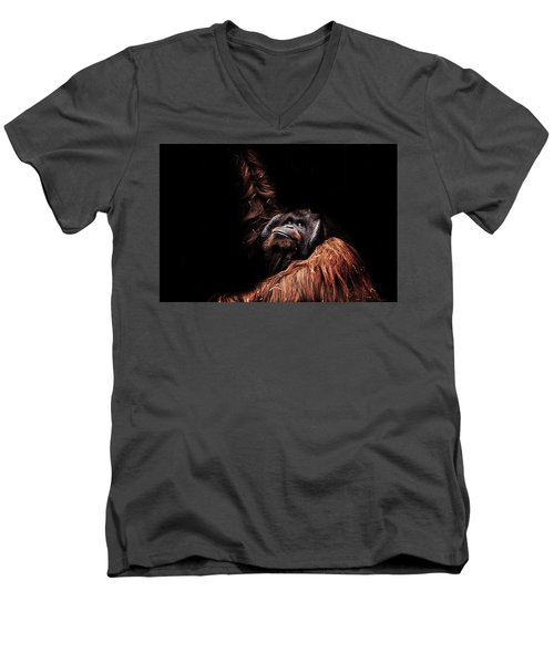Orangutan Men's V-Neck T-Shirt by Martin Newman