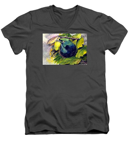 Paradise Bird Men's V-Neck T-Shirt