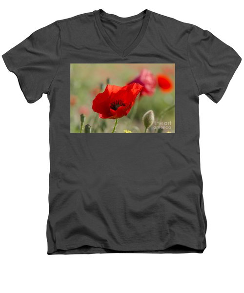 Poppies In Field In Spring Men's V-Neck T-Shirt by Perry Van Munster
