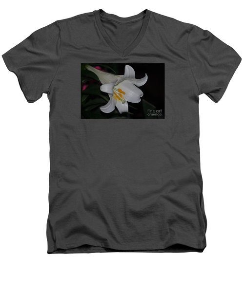 Purity Men's V-Neck T-Shirt