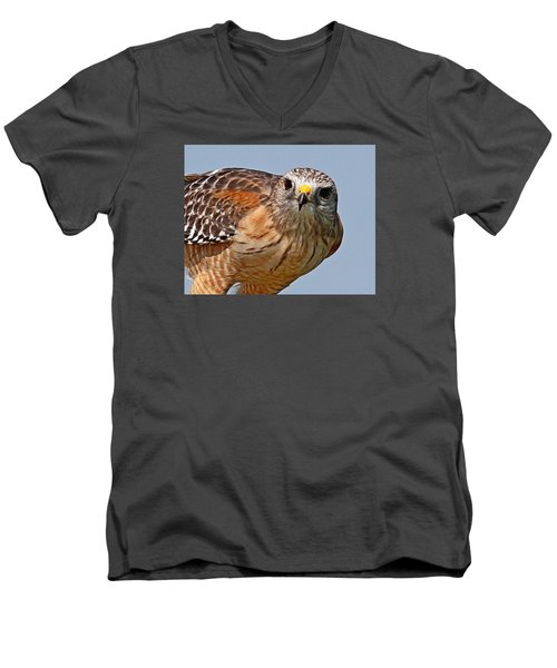 Red Shouldered Hawk Men's V-Neck T-Shirt